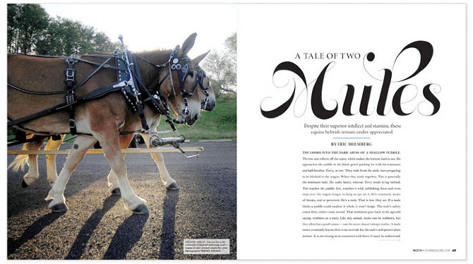 A Tale of Two Mules