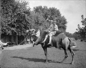 Camel ride at Locke's Zoo, circa 1924.