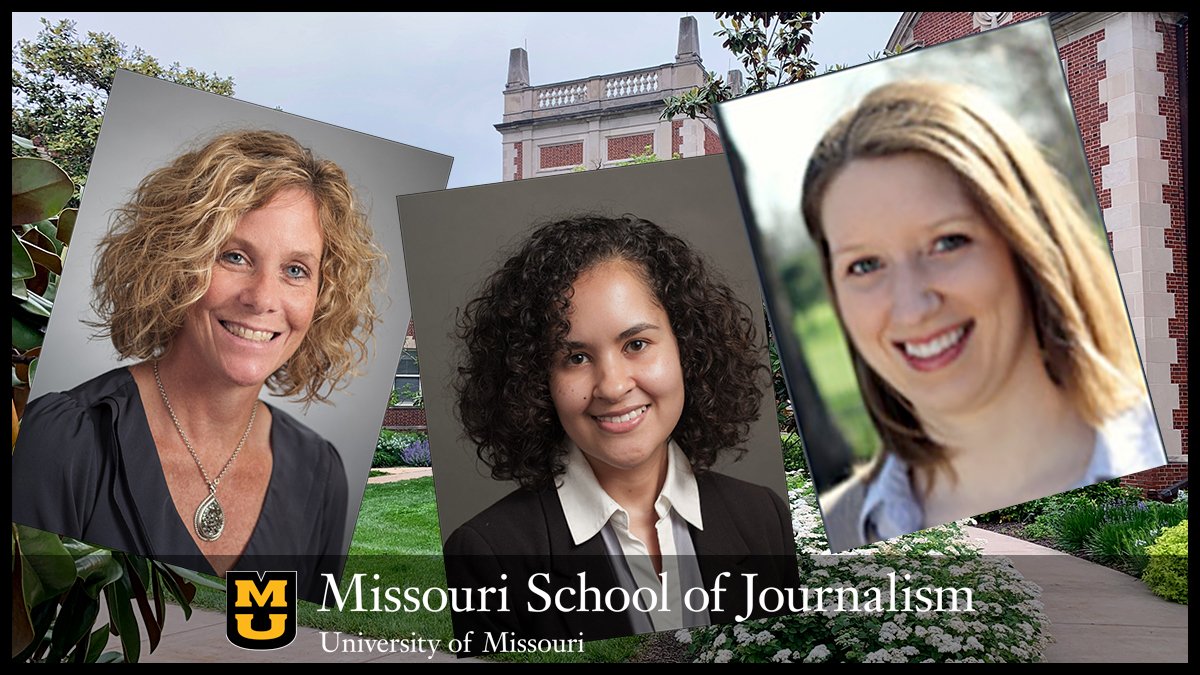 Reynolds Faculty Fellowships